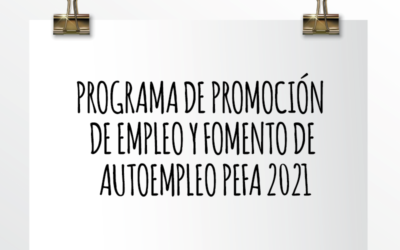 Nota de Aviso 17/2021. Programa de promoción de empleo y fomento de autoempleo PEFA 2021 – Subvenciones a fondo perdido para empresas.